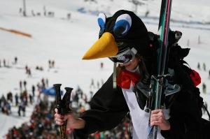 PenguinGirl